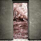 Doorway by lightsmith