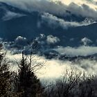 Clouds in the Smokies by Karen Stevens