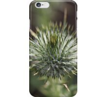 Round Green Thistle Bud iPhone Case/Skin