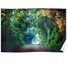 A Green Tunnel Poster