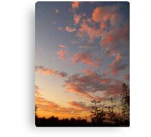"""""""A Dance Across The Sky"""" Canvas Print"""