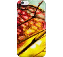 Light on the Verge of a Symphony iPhone Case/Skin