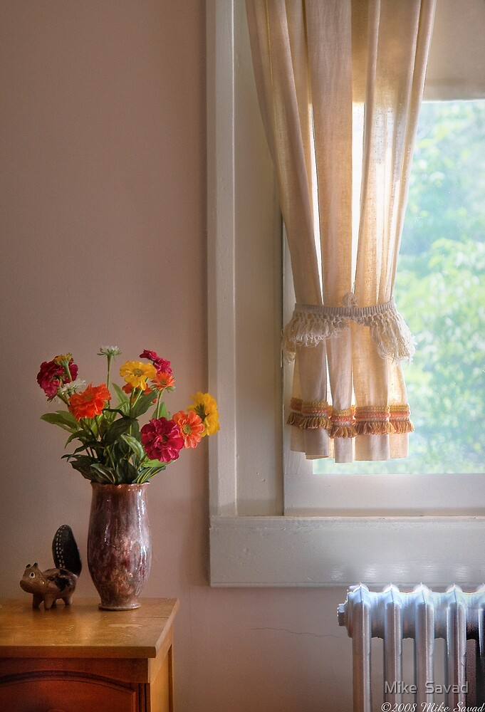 Still Life by a window by Mike  Savad