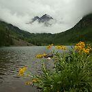 Cloud Mountain by Daniel Doyle