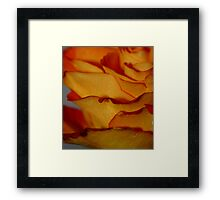 Pedals Lifted Up Framed Print