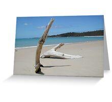 Great Keppel Island Driftwood Greeting Card
