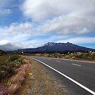 Mt Ruapahu, N.Z. by Janine  Hewlett
