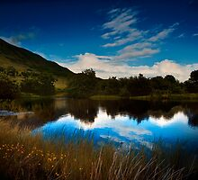 A View From The Waterworks by Paul Cook