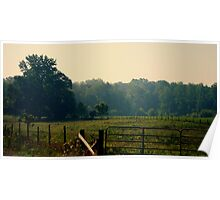 Mid Summer Pasture Poster