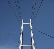 Albury Suspension Bridge #2 by Jordan N Clarke
