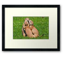 Hugging time..... Framed Print