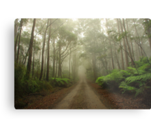 Mysterious Road Metal Print