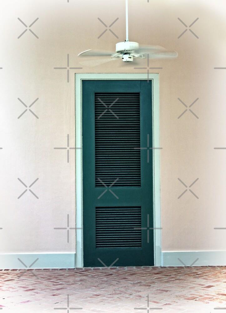 The Green Door by CarolM