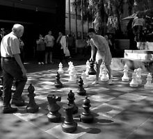 Chess by Charlotte Pridding