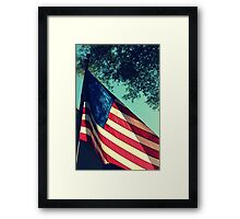 Land of the Free.. Framed Print