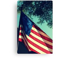 Land of the Free.. Canvas Print