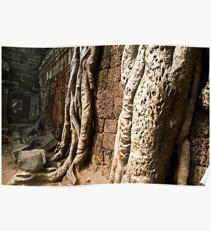 Overgrown (Ta Prohm, Siem Reap, Cambodia) Poster