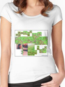 Ladybug collage Women's Fitted Scoop T-Shirt