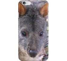 The Tasmanian Pademelon iPhone Case/Skin