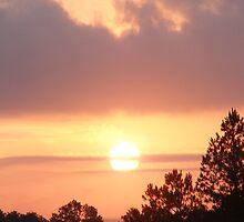 Southern Sunrise by Hunter Guess