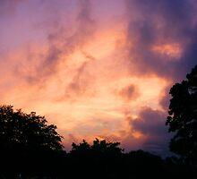 Blazing Sky by Hunter Guess