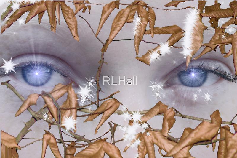 Elfin Gaze by RLHall