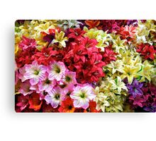 World of Colourful Flowers Canvas Print