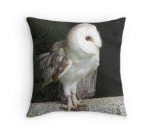 A Barn Owl Named Plop Throw Pillow