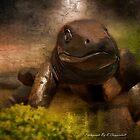 Australian Goanna Art 01 by kevin chippindall