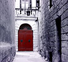 The Red Door by Xandru