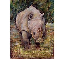 Rhino Photographic Print