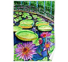 The Rainbow Pond Poster
