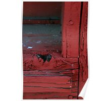 Window Sill II Poster