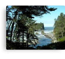 North Pacific Coast (near Kalaloch, Washington) Canvas Print