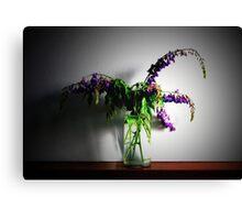 A violet swan song (un canto del cigno viola) Canvas Print