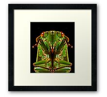 Greengrocer X Framed Print