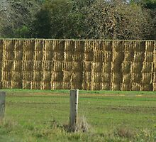 Hay Stacked by retsilla