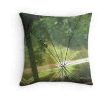 Talking Rock windshield glassblast Throw Pillow