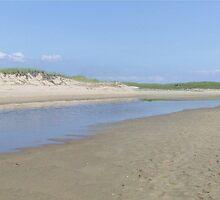 Miles of Sand by Tom  Reynen