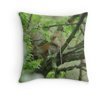 Squirrelly Stealth Throw Pillow