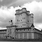 Chateau de Vincennes by Elena Skvortsova