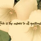Love Is The Answer by amimages