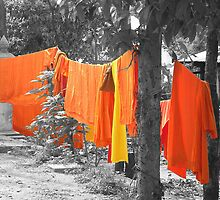 Washing the Sacred Robes by Liz Watt
