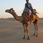 Camel Ride by Liz Watt