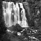 Marakopa Falls by Varinia   - Globalphotos