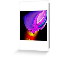 Magic Brush Greeting Card