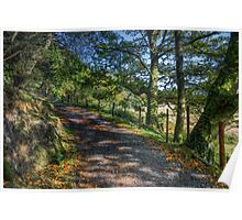 Autumn Countryside Poster