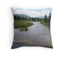 Water where the road should be... Throw Pillow