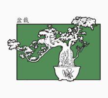 bonsai by satotz