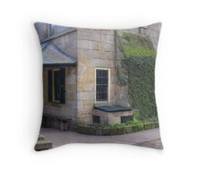 Settlers Arms Throw Pillow